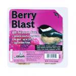 View: Heath 11.25 Oz  Berry Blast Suet Cake (DD-15)